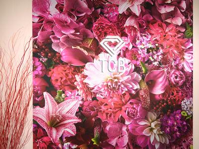 TCB福島院