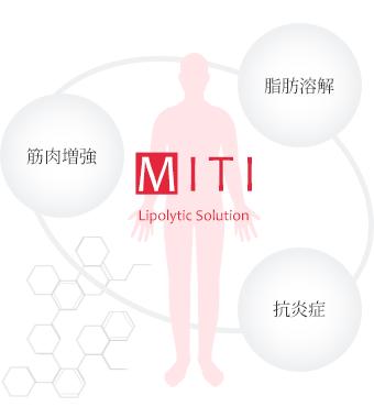 【MITI】脂肪溶解・筋肉増強・抗炎症