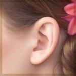 立ち耳修正・耳介形成