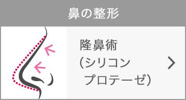 .隆鼻術(シリコンプロテーゼ)