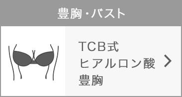 .TCB式ヒアルロン酸豊胸