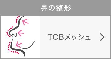 .TCBメッシュ